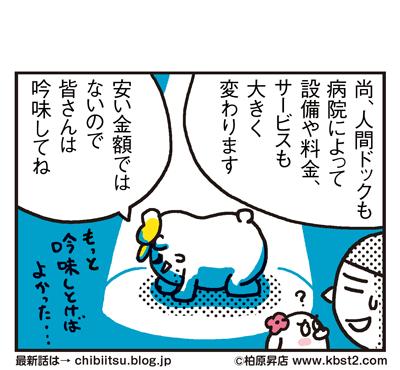 170517_shin-chibiitu_195(5koma)2