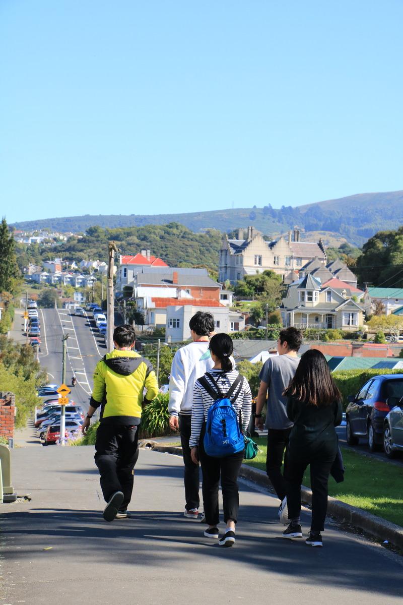 in NZ