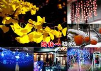 晩秋&初冬