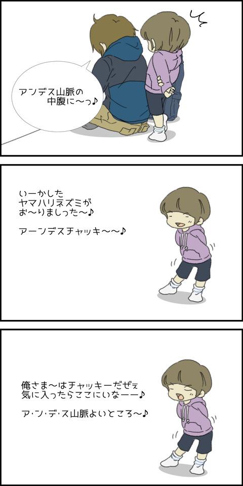 アンデスチャッキー③