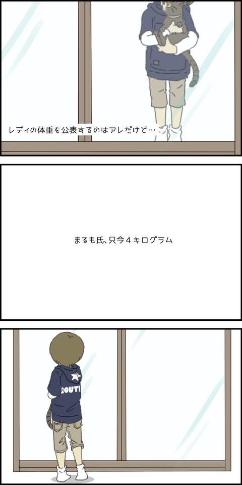 しっぽバーン①