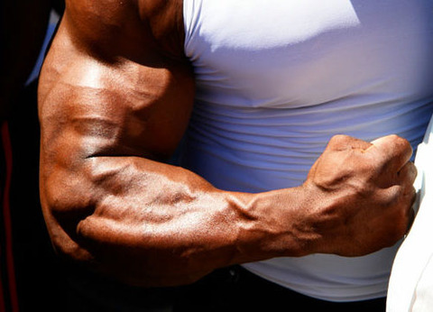 forearm-exercises-workouts-500x360