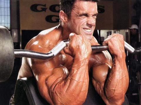 barbell-biceps-curls