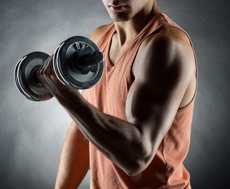 腕の筋肉画像(カテゴリ)