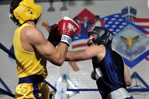 boxers-1919379_960_720-680x453