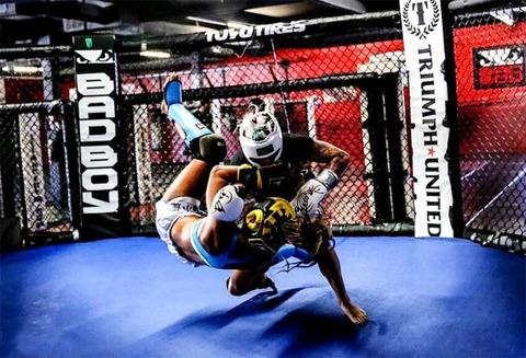 MMA-900x614