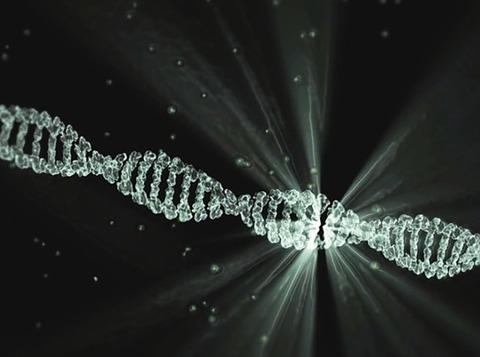 【朗報】魔法のダイエット薬誕生なるか?ある遺伝子を取り除くことで何を食べても太らないことがマウス実験で実証される