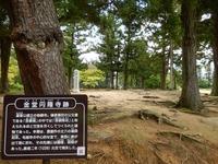 平泉 毛越寺 (5)