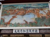 平泉 毛越寺 (17)
