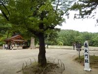 平泉 毛越寺 (18)