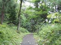 平泉 金鶏山 (13)