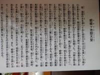 平泉 達谷窟毘沙門堂 (16)