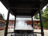 平泉 毛越寺 (20)