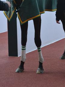 160326-9カイザーバル脚