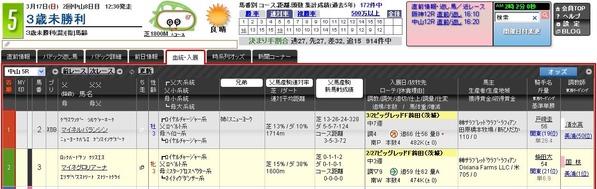 育成牧場_マイネル鉾田ワンツー_3未
