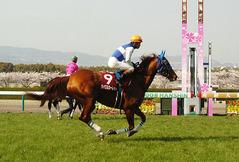 大阪杯 ダイワスカーレット 返し馬