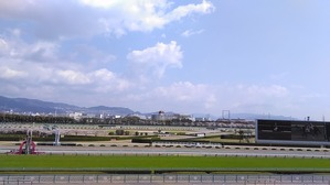 阪神ゴール前