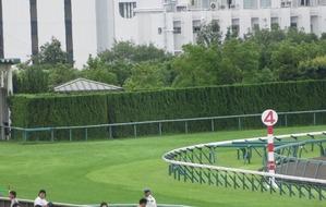 中京4コーナー