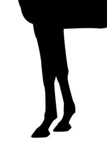 アルカセット-脚