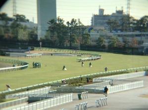 11/30阪神4角