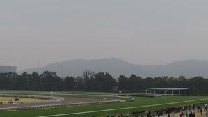 京都4コーナー