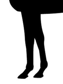 モンジュー-脚