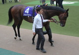 安田記念・ユニコーンSの勝ち馬の写真