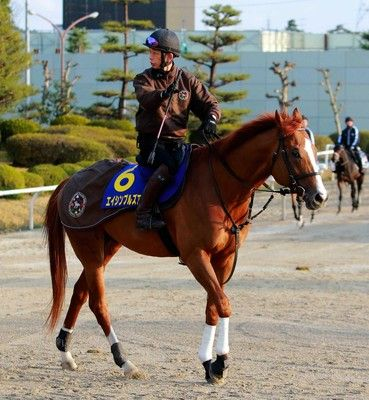 高松宮記念の予想…今年の馬場から究極の穴馬とは