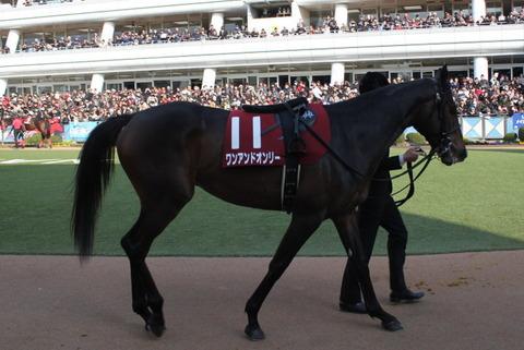 皐月賞【2014年】|注目馬ワンアンドオンリーにかなり期待