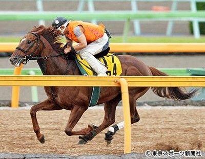 七夕賞の最大級の穴馬|マイネルラクリマ