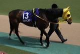 ヴィクトリアマイル予想【2012年】-過去の活躍馬