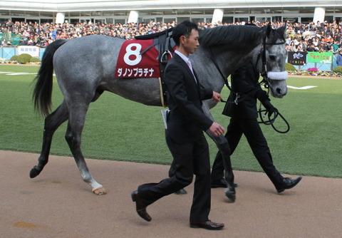 皐月賞|唯一のG1馬(ダノンプラチナ)をどうするか?