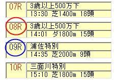 極軸レース番号