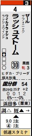 土曜阪神1Rラッシュストーム馬柱