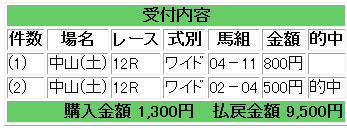 馬券中山12R