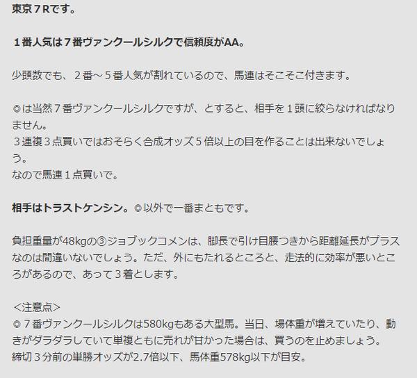 東京7R見解