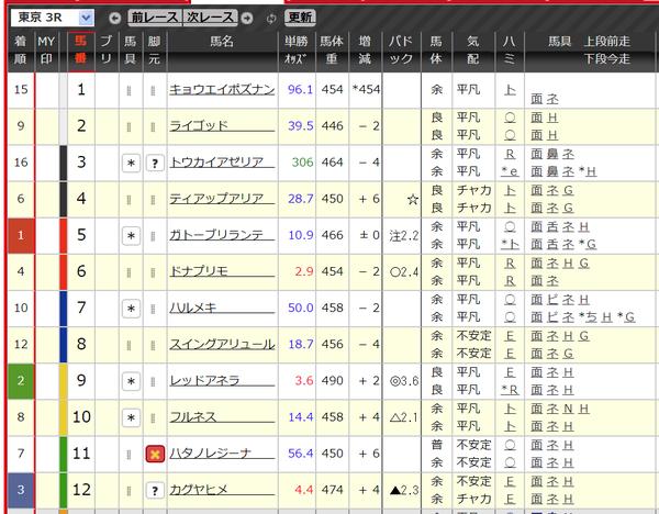 パドック_東京3R