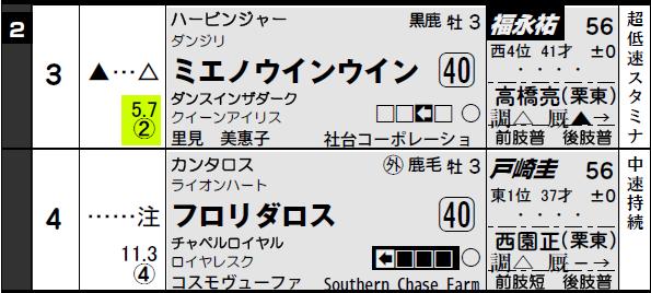 阪神4R_3-4