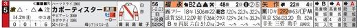 チェック_目黒記念激走馬