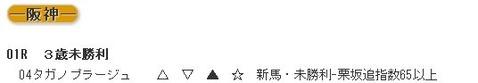 データ0225阪神1R的中