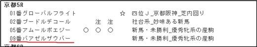 データ_1103土京都5R