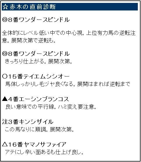 ガチンコ最終_0224阪神12R