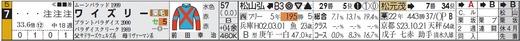 チェック_錦Sワイズリー