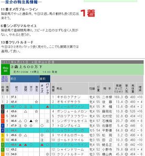 日中山8R.jpg