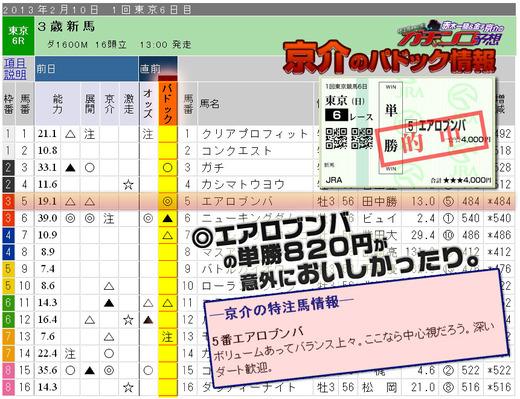 ガチ_0210東京6R