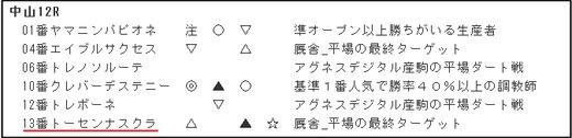 データ_日曜中山12R