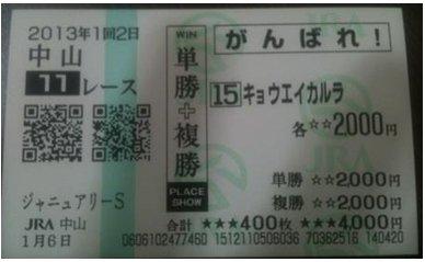 馬券_0106中山11R京介