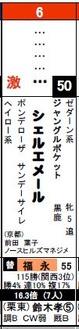 京都12Rシェルエメール
