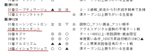 データ_1209日阪神11R12R