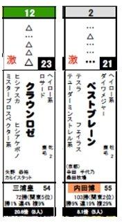 データ_日東京5R激走馬